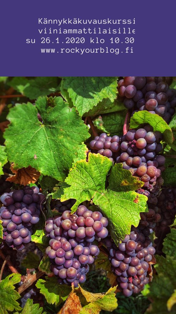 kännykkäkuvauskurssi viiniammattilaisille, kännykkäkuvauskurssi